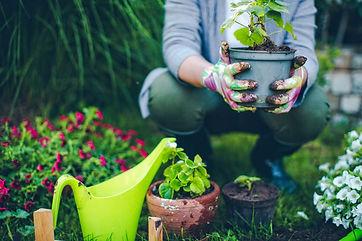 proud-gardener-royalty-free-image-539829