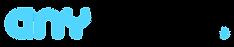 anyvision_logo_bbw-1.png