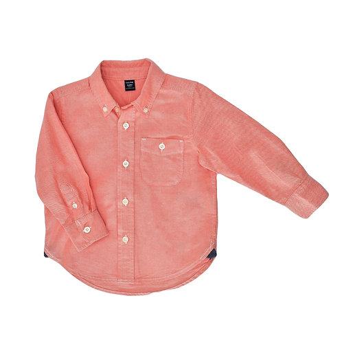 2Y |  GAP | חולצה סלמון