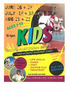 Taekwondo Summer Camp.jpg
