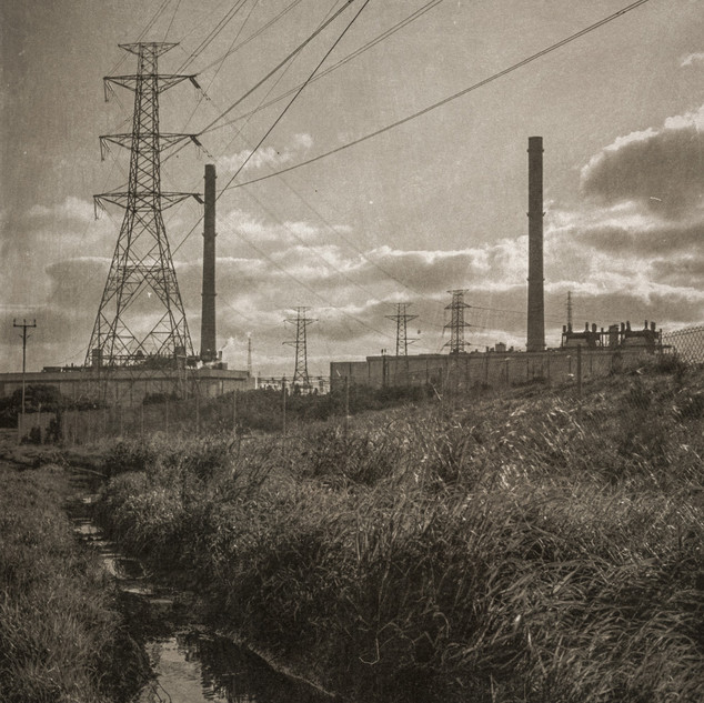 Powerlines and A Puddle