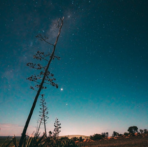 A Little Like Arizona