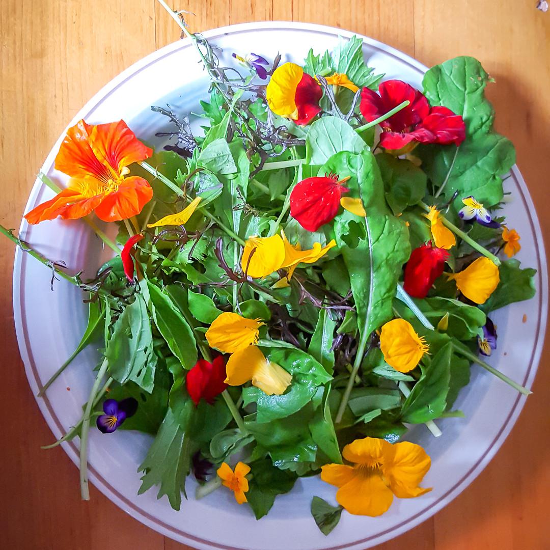Salade florale