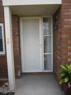 Hinged security door with one way vision mesh