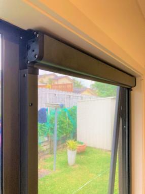 Cabriolet roller screen window
