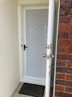 Hinged security door with one-way vision mesh