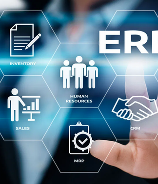 ERP and Management Software