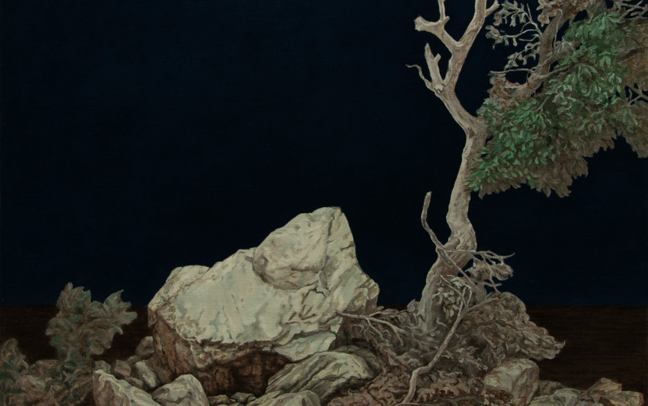 Tree and stone