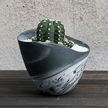 美濃焼サボテンの鉢