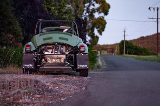Zombug road testing