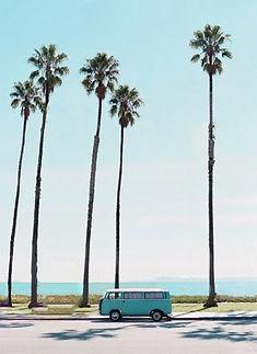 vw_bus_palmtrees2.jpg
