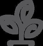 TOKKA tree icon2.png