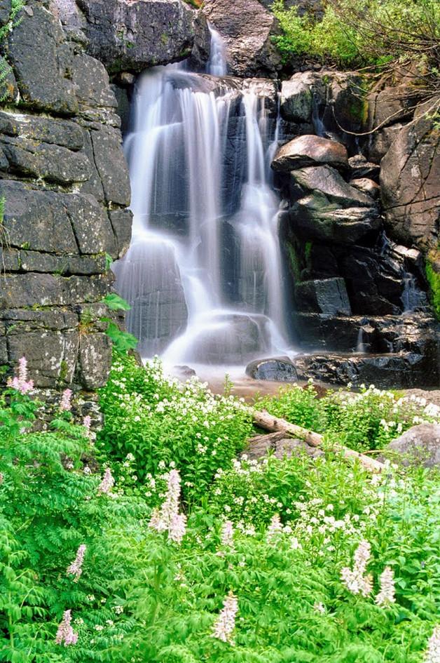 fitzweed falls.jpg