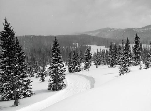 Alberta Park Nordic Skiing