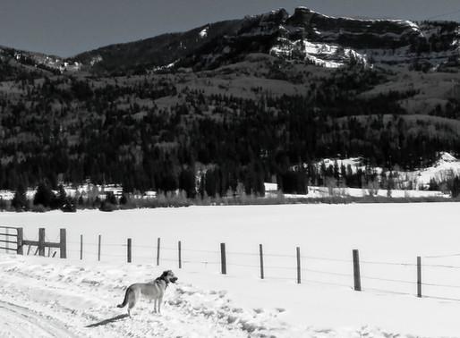West Fork Nordic Skiing
