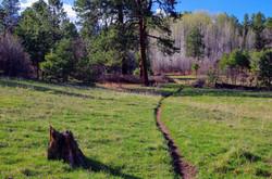Gopher Trail