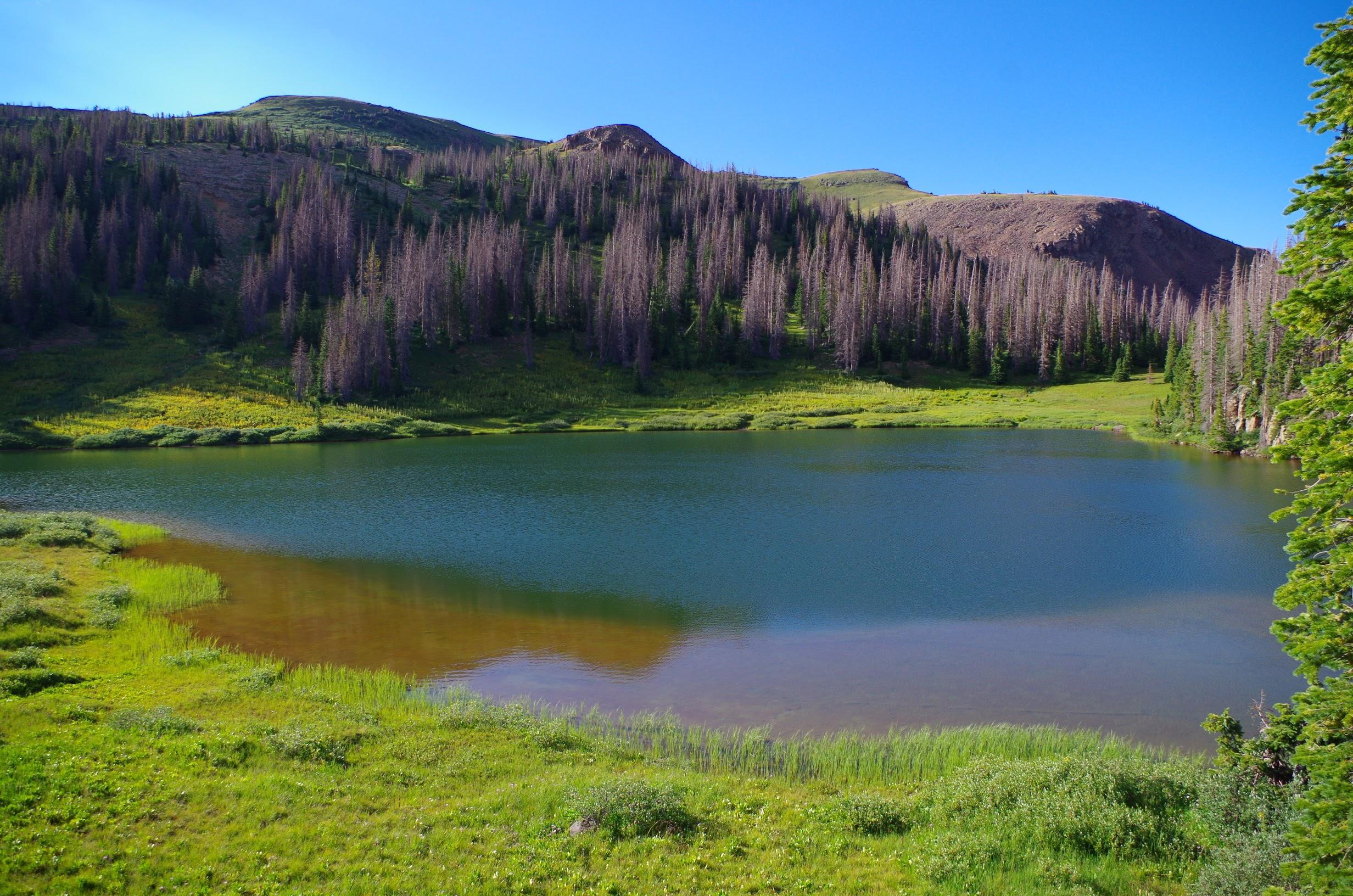 Quartz Lake near Pagosa Springs