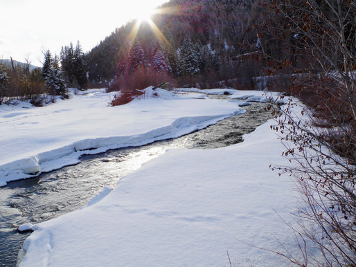 Snowpack Update and Outlook: March 2020