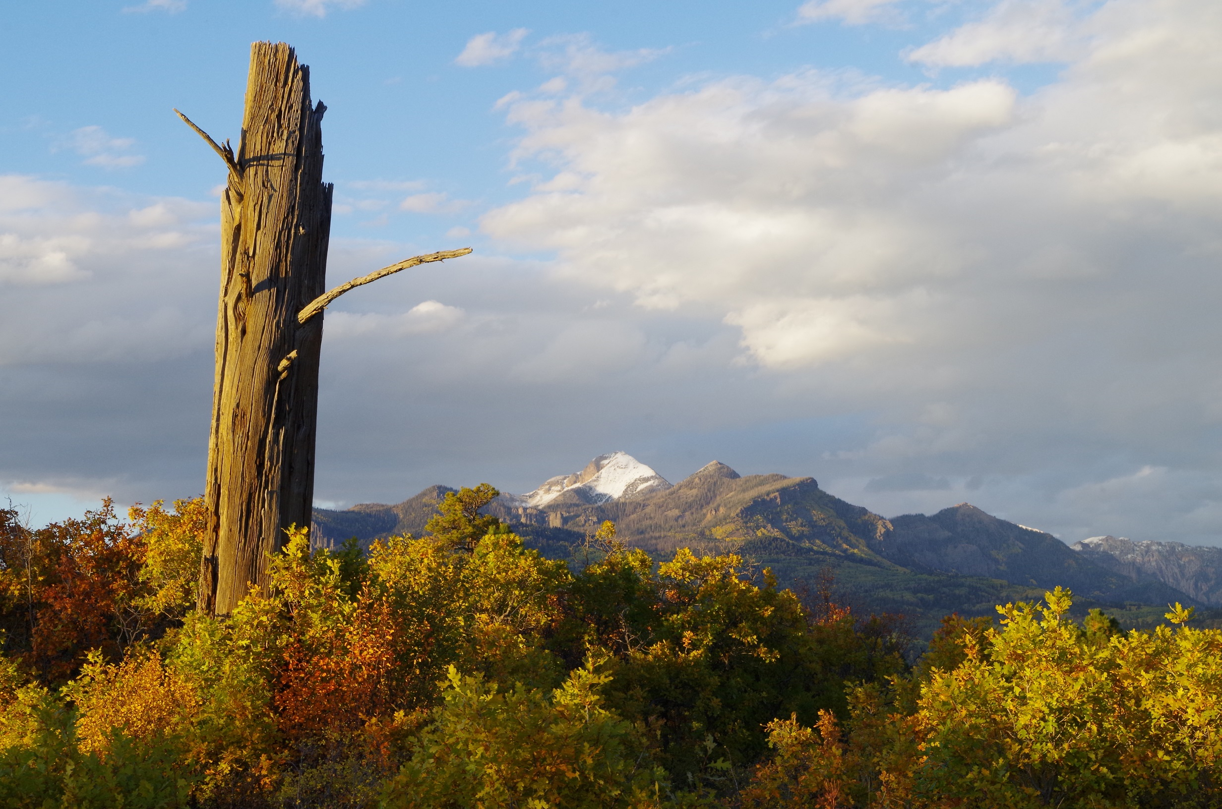 Snag and Pagosa Peak Coyote Hill