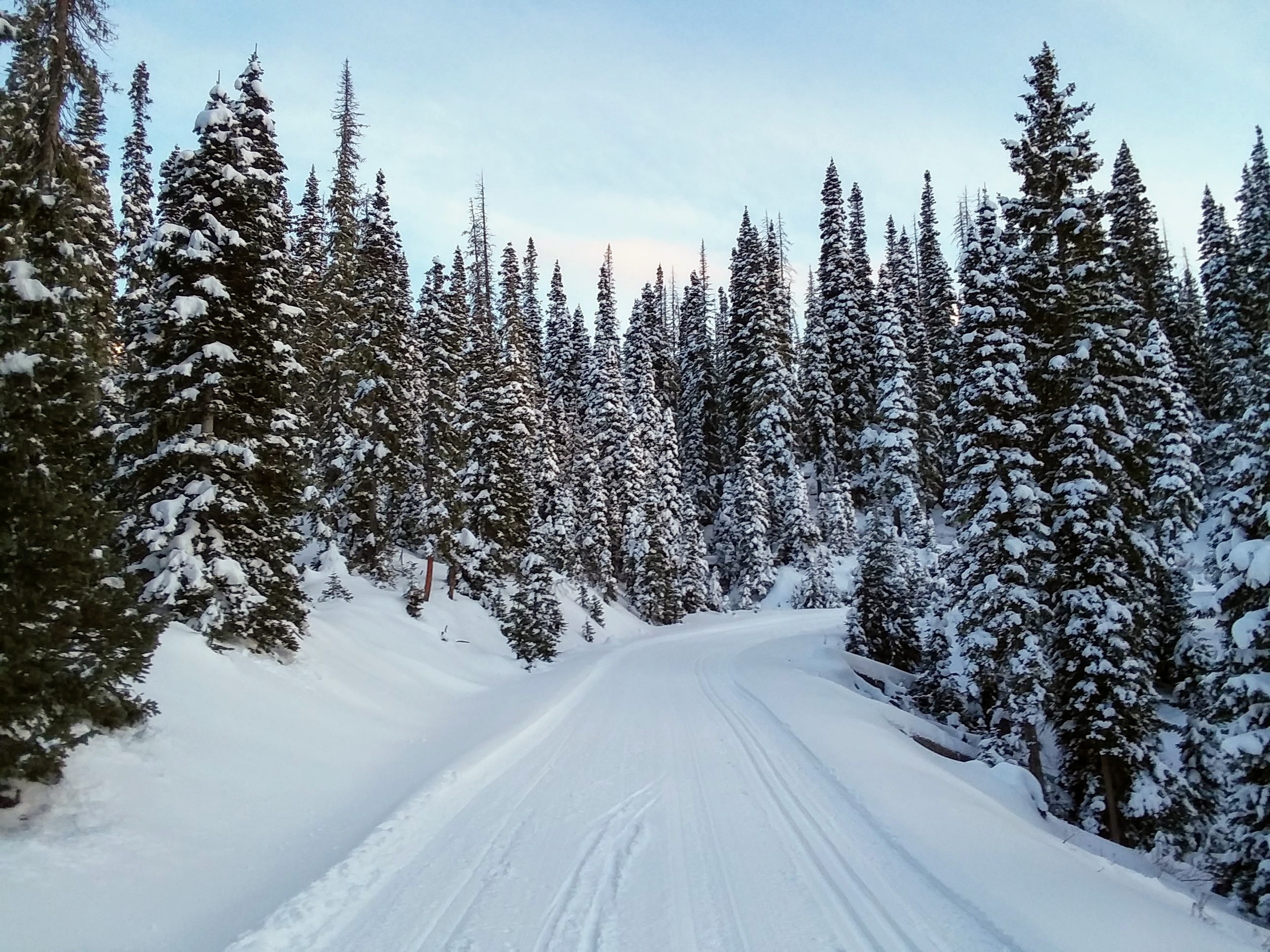 Fall Creek Road
