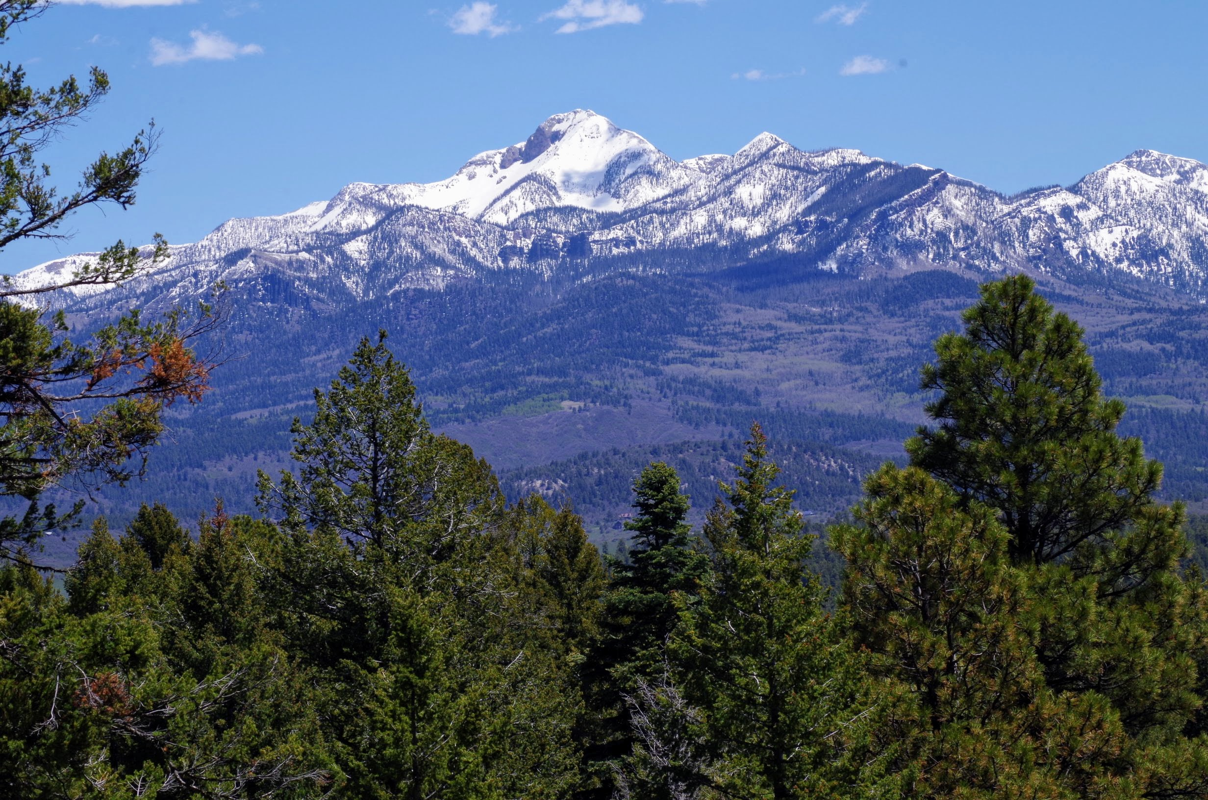 Pagosa Peak from Chris Mountain