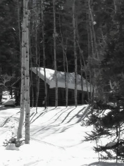 Cabin in West Fork area
