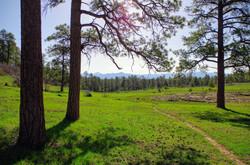 Boulder Trail