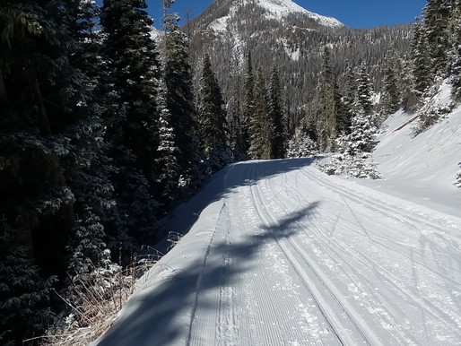 Nordic Skiing on Fall Creek Road