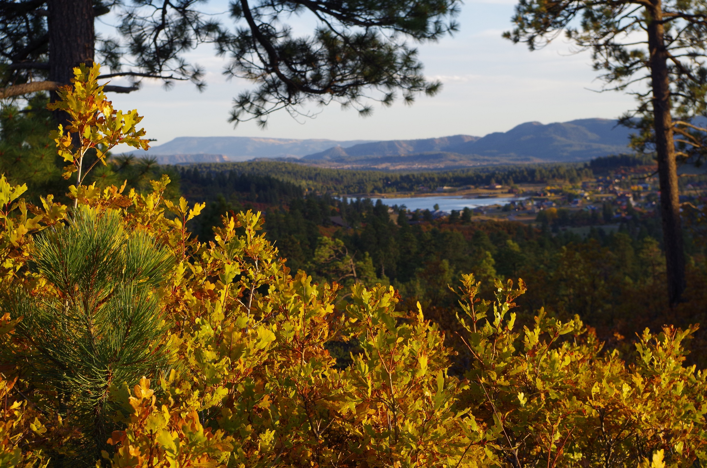 Lake Hatcher from Coyote Hill