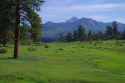 Coyote Hill near Pagosa Springs