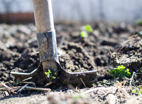 Tilling the ground of our heart