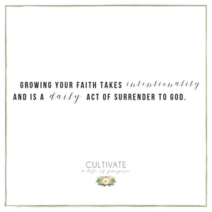 cultivate purpose, cultivating faith, growing spiritually, God, Jesus, Bible, Galations, Spirit and the flesh, struggle