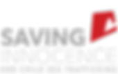 footer_logo_1-300x189.png