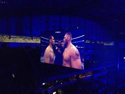 UFC ON FX 8, JARAGUÁ
