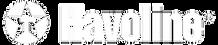havoline-logo-2.png
