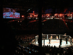 UFC FIGHT NIGHT 29 - BARUERI, SP