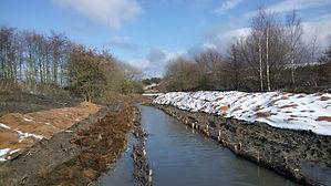 River Restoration 2.jpg