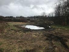 Wet pond 2.JPG