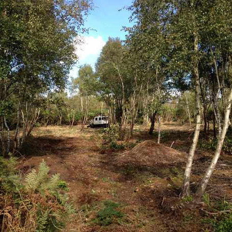 Humberhead Peatland NNR - LIFE+ peatland restoration Framework 2016/2017 - Natural England