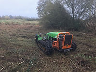 Sensitive site mowing BV600