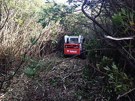 Vegetation Management mulching