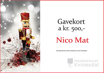 Nico Mat Kvinesdal.jpg