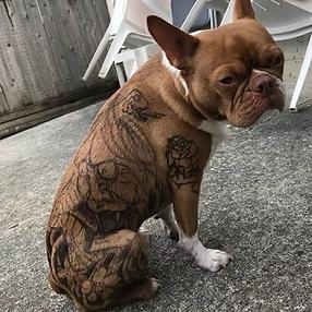 tattoodog.png