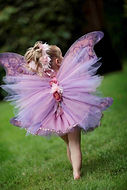 Couture Fairy Wings