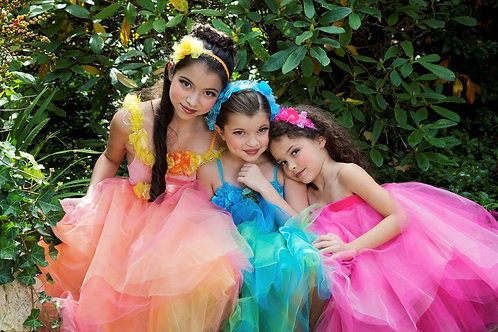 4 pc Fairy Princess Party Dress - Style 2