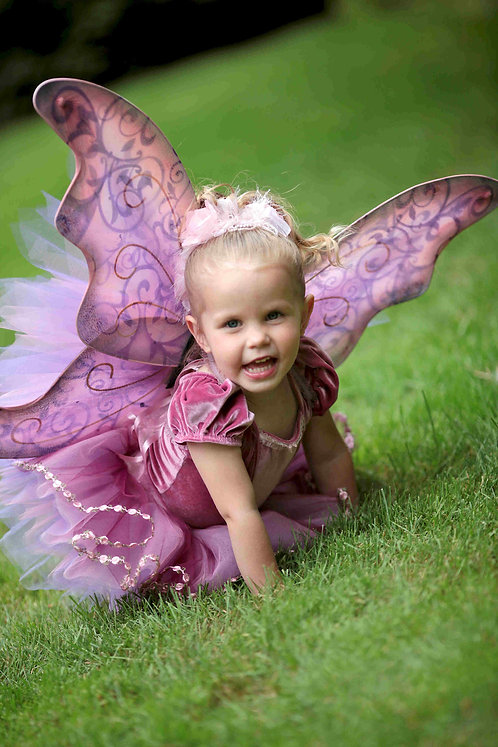 4 pc Ballerina Fairy Costume