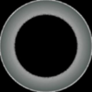 Trucode Gene Repair spherical nanopartic