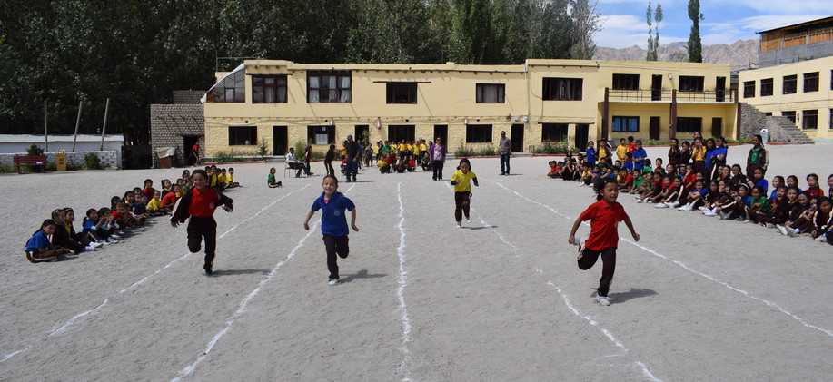 Junior Inter-House Sport's competition at LPS