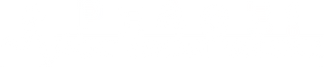 Nuovo%20logo%20SAV%20_edited.png