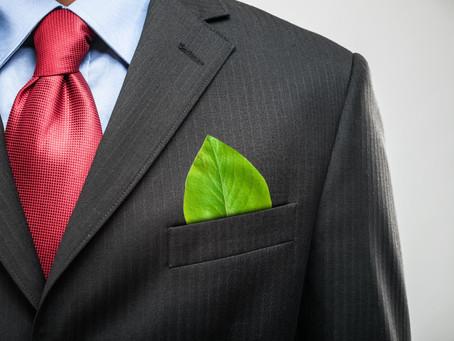 Recuperação verde: Oportunidades num mundo pós-covid 19